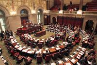 Progressives to the NYS Senate IDC_Rachel-Lavine