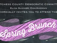 dutchess county dems